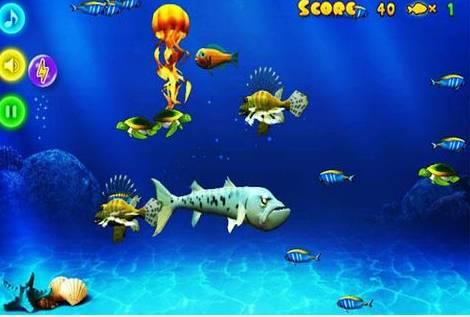 《大鱼吃小鱼》的玩法揭秘