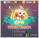 《天天星连萌》宠物大全:天宫小兔图鉴