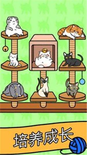猫咪公寓安卓最新版