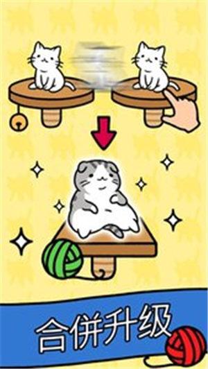 猫咪公寓最新版下载